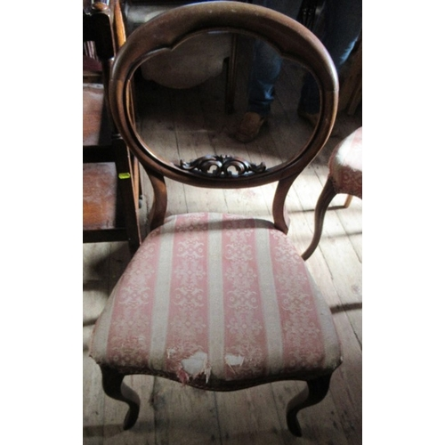 52 - A pair of Victorian dining chairs, raised on cabriole legs