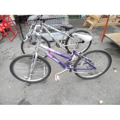 12 - Girls Raleigh Bike...