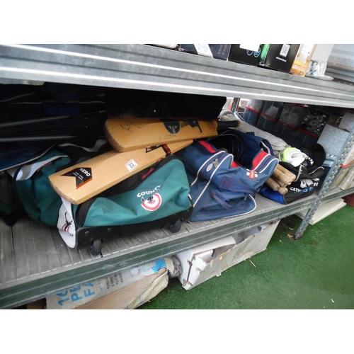 33 - Cricket bats, golf clubs etc...