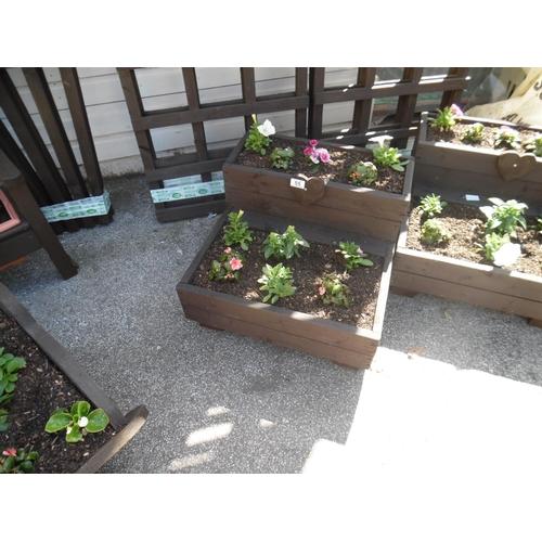 55 - Planted step planter...