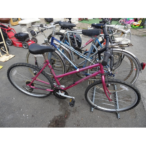 17 - Dynomax ladies bike...