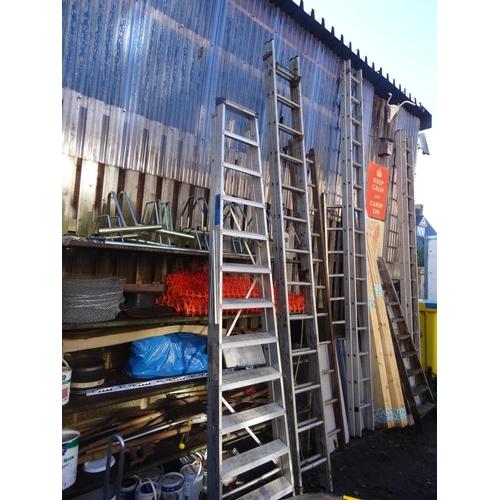 1 - Large ali step ladder & 2 tread ladder
