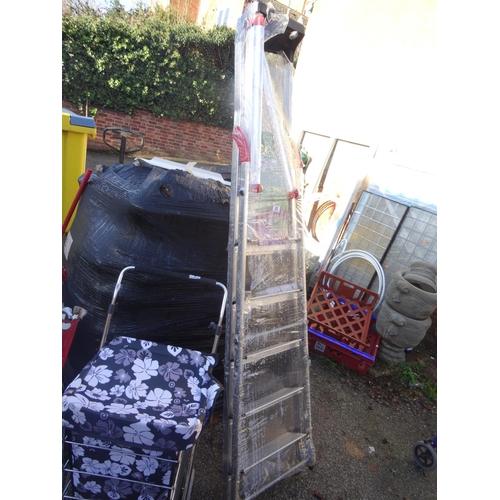 20 - Hailo step ladder...