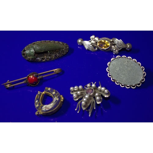 113 - Collection Of 6 Brooches To Include A Silver Amethyst And Seed Pearl Set Butterfly, A Micro Mosaic H...