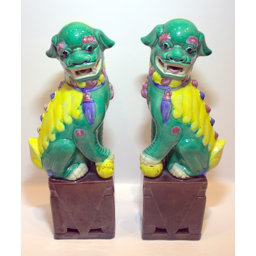 299 - Pair Of Antique Coloured Glazed Temple Dogs Standing On Aubergine Square Bases, Height 12 Inches...