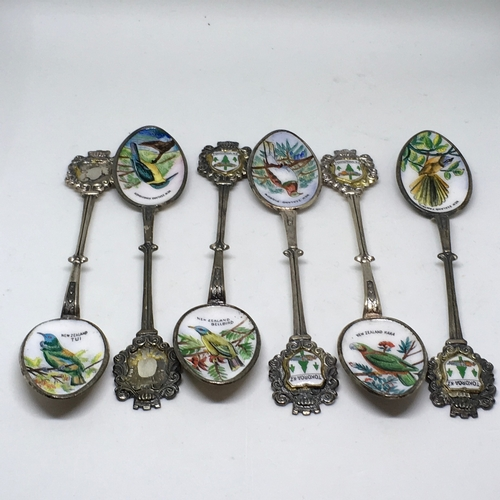 191 - Collection of 6 vintage spoons with enamel bowls showing birds of New Zealand, Ouvenir of Tokoroa NZ...