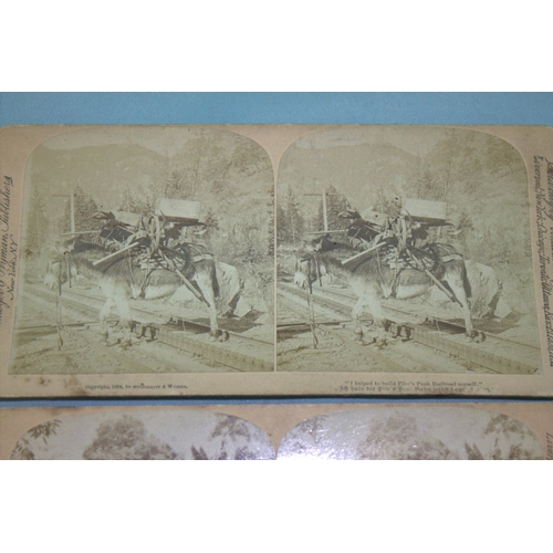 649 - Two Photographs By J.F Jarvis Depicting Mexican Coffee Plantation Cordova 1890 And Donkey With Heavy...