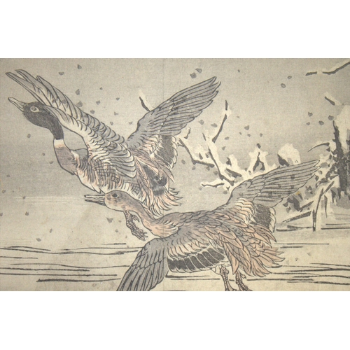 393 - Antique Japanese Wood Block Prints By BAIREI KONO (Kyoto School) Depicting Geese, Unframed, 10x7 Inc...