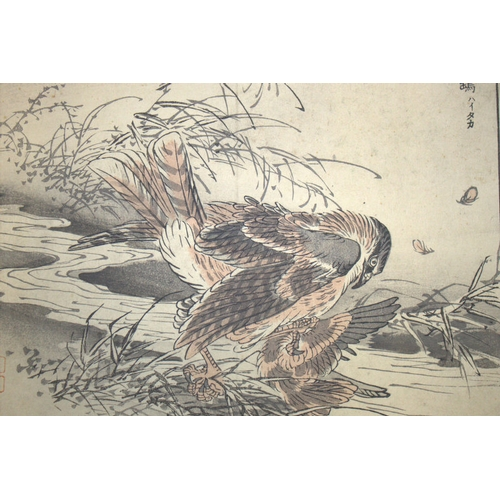 394 - Antique Japanese Wood Block Prints By BAIREI KONO (Kyoto School) Depicting Birds Of Prey, Unframed, ...
