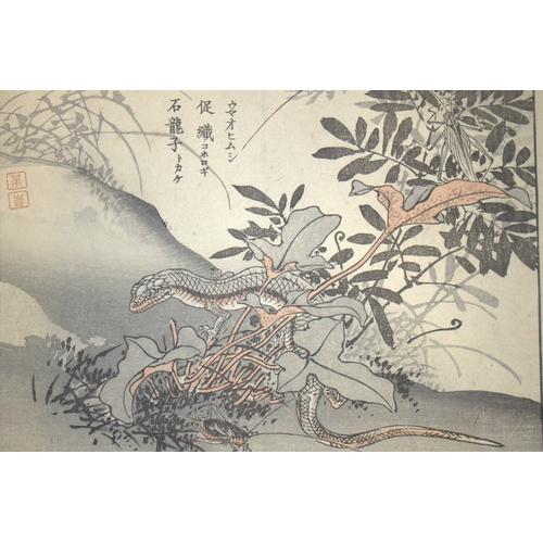395 - Antique Japanese Wood Block Prints By BAIREI KONO (Kyoto School) Depicting Lizard, Unframed, 10x7 In...