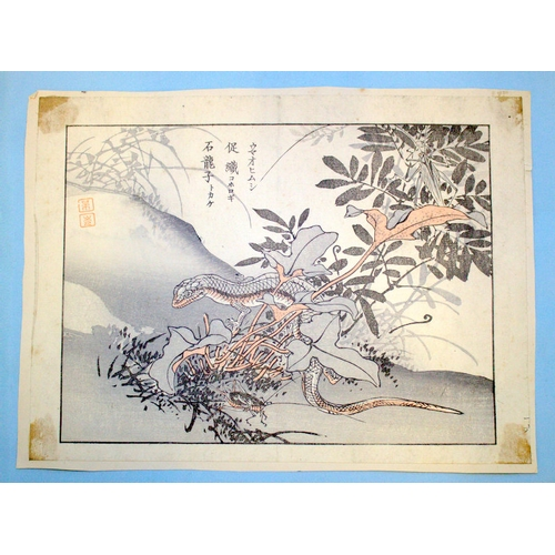 395 - Antique Japanese Wood Block Prints By BAIREI KONO (Kyoto School) Depicting Lizard, Unframed, 10x7 In...