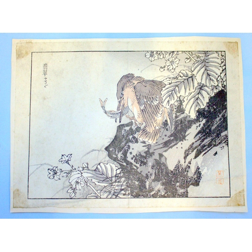 396 - Antique Japanese Wood Block Prints By BAIREI KONO (Kyoto School) Depicting Kingfisher, Unframed, 10x...