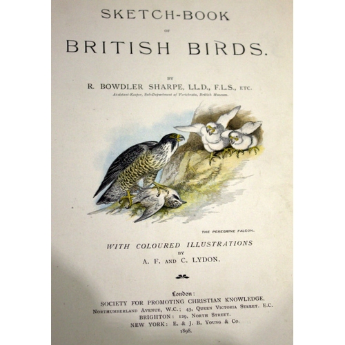 798 - Sketch Book Of British Birds By R Bowdler Sharpe, With Coloured Illustrations By A F And C Lydon. Lo...