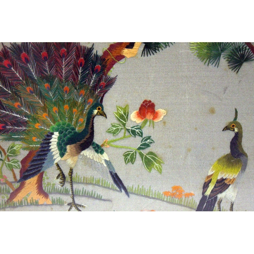 347 - Antique Chinese Embroidered Silk Panel Depicting A Peacock With Hen Amongst Pine Trees, With Inscrip...
