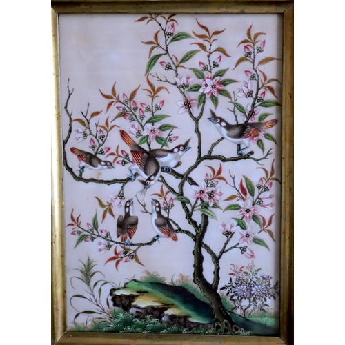 311 - 18thC Exquisite Chinese Painting On Pith Paper, Depicting A Family Of Exotic Birds, On Branch Feedin...