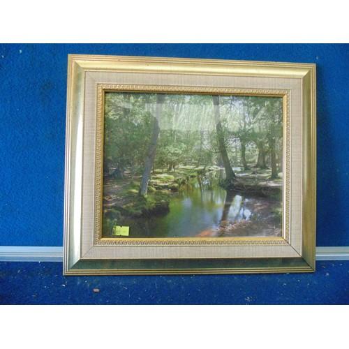 136 - framed landcape forest print....