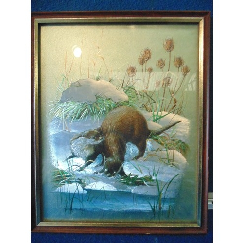 239 - Framed coloured silver leafed picture of otters...