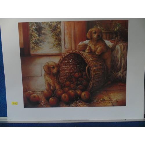 338 - Puppy print...