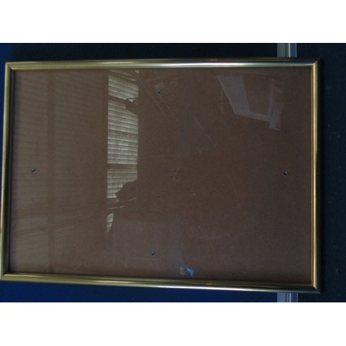 393 - Small gold frame...