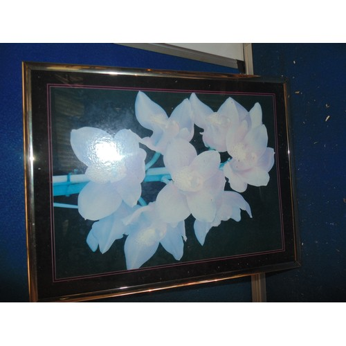 488 - flower print in frame...