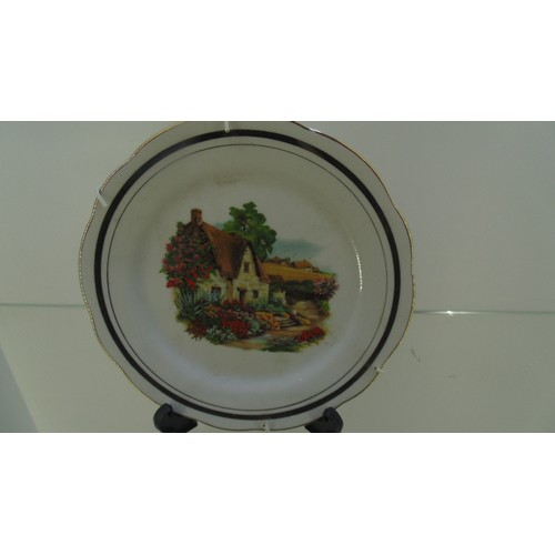 147 - Small hanging plate of a cottage