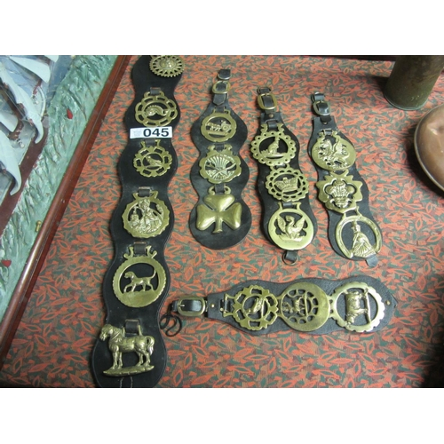 45 - Good selection of horse brasses....