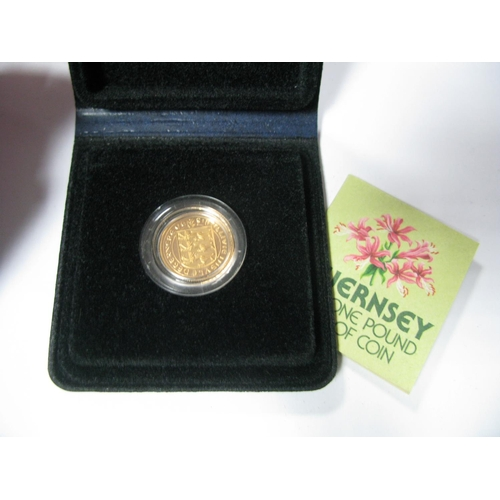 570 - A Guernsey Gold Proof One Pound Coin 1981, accompanied by literature, cased (8g)...