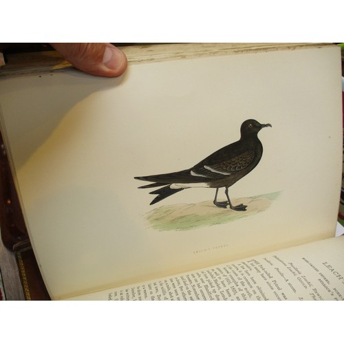 7 - Six Books - A History of British Birds by F O Morris