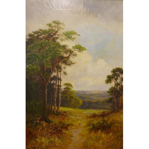 9 - Walter Norfolk, pair of rural landscapes, oil on canvas, 60 x 40cms, framed...