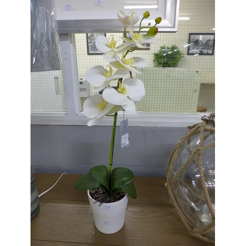 1352 - An artificial single moth orchid (54837907)   #...