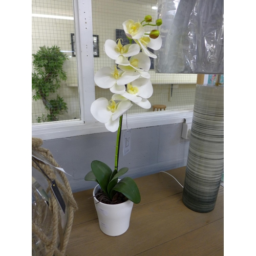 1353 - An artificial single moth orchid (54837907)   #...