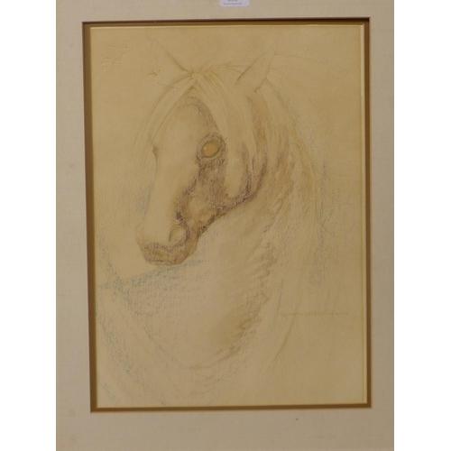 20 - Polyanna Pickering, study of a horse, pastel, 49 x 35cms, unframed...