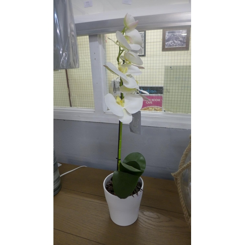 1355 - An artificial single moth orchid (54837907)   #...