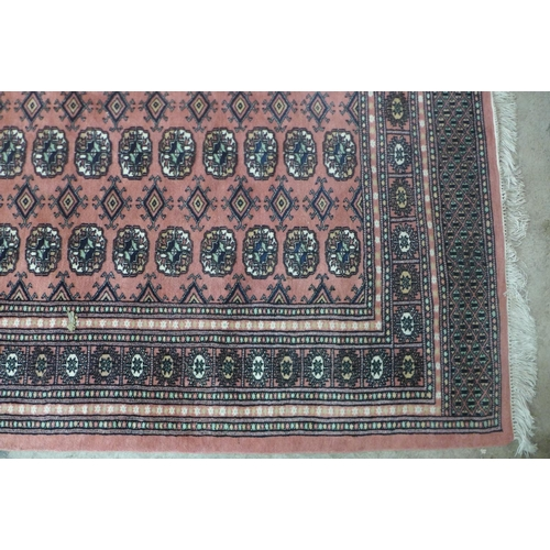 69 - A Pakistani salmon pink ground hand knotted rug, 255 x 158cms...