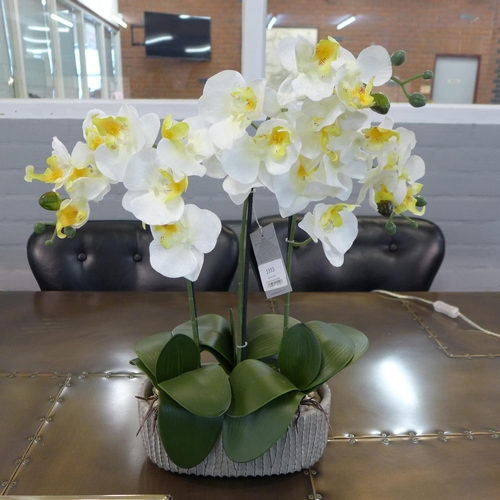 1333 - White moth orchids in a textured grey bowl (54813011)   #...