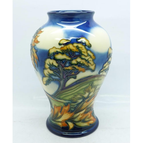 607 - A Moorcroft Wenlock limited edition vase, designed by Philip Gibson, dated 2001, numbered 156/200, 1...
