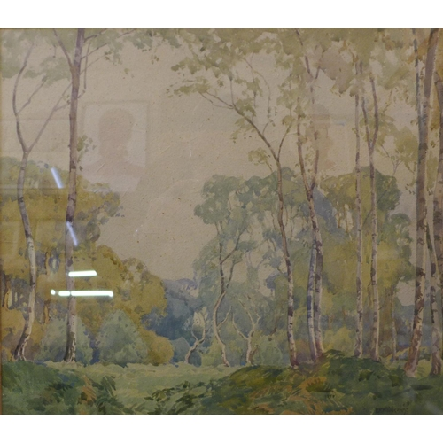 5 - H.R. Wibberley, forest landscape, watercolour, 35cms x 40cms, framed...