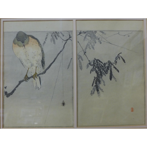 34 - Watanabe Seitei (Japanese 1851-1918), two colour woodblock prints framed as one, each 23 x 15cms...