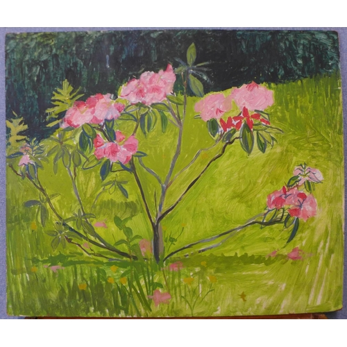 19 - British School, study of flowers in a field, oil on board, 66 x 78cms, unframed...