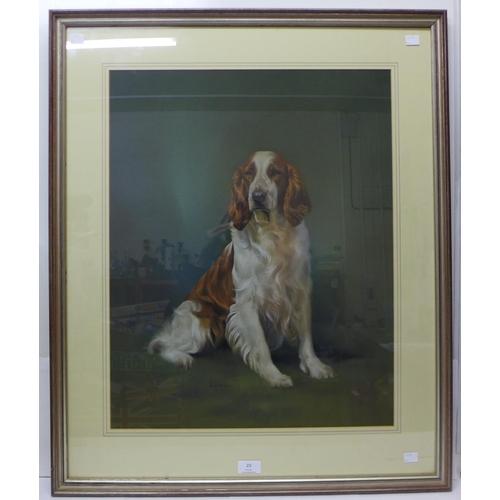 23 - John H. Owen, Welsh Springer Spaniel, pastel, 59 x 47cms, framed...
