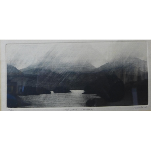 35c - A signed Peter Ford limited edition etching, Fir Island - Coniston, 14 x 28cms, framed...