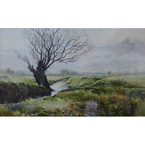 5 - Michael Crawley, winter river landscape, watercolour, 22 x 35cms, framed...