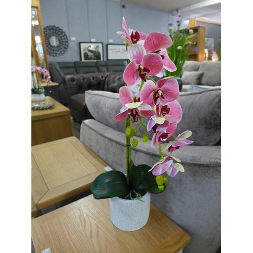 1321 - A double orchid arrangement, 61cms (54041412)   #...