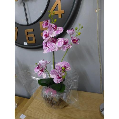 1323 - A speckled pink orchid arrangement, 58cms (52641014)   #