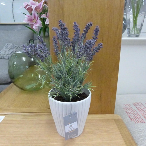 1413 - A potted Lavender in a ribbed pot, 36cms (50745406)   #...