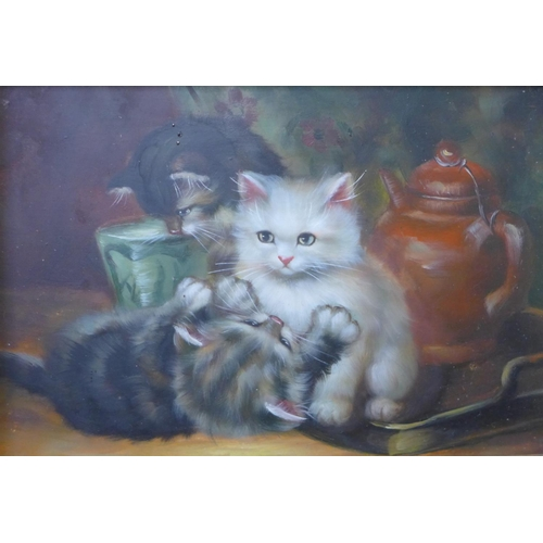 21 - Two 20th Century oils on panel, kitten playing, 12 x 17cms and a still life of flowers, 17 x 11cms, ...