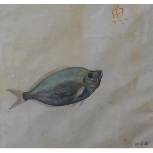 48 - Two Japanese School studies of fish, watercolour, 25 x 27cms and an English School cottage scene, wa...