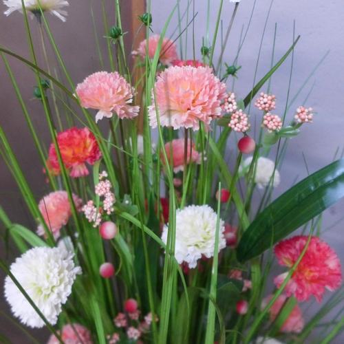 1442 - A 100cm sheaf of carnations (2604115)   #