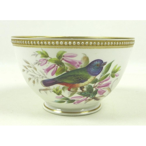511 - A Royal Worcester porcelain bowl, circa 1880, decorated with colourful birds amongst flowers and lea...