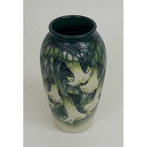 10 - A limited edition Moorcroft pottery vase, Angels trumpet pattern, depicting cream flowers on green g...
